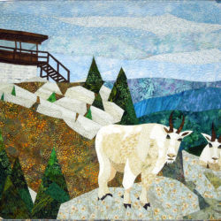 Black Mountain Goats