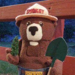 Smokey the Bear Nutcracker