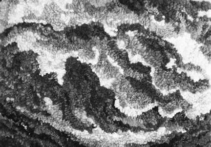 Black and White image of wave rug