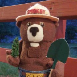 Smokey the Bear Nutcracker